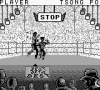 Best of the Best : Championship Karate - Game Boy