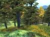 The Elder Scrolls IV : Oblivion édition 5éme anniversaire - PC
