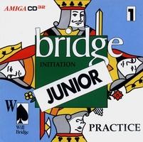 Will Bridge : Initiation Junior - Practice 1